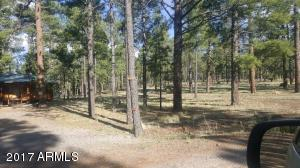 Lot 2 Crosby Acres Forest Lot 2, Greer, AZ 85927