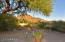 9725 E SANDS Drive, Scottsdale, AZ 85255