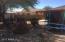 Desert Northeast Facing Backyard