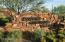 41188 N 102ND Place, Scottsdale, AZ 85262