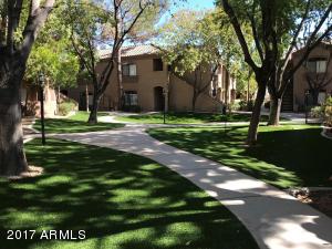 15095 N THOMPSON PEAK Parkway, 3099, Scottsdale, AZ 85260
