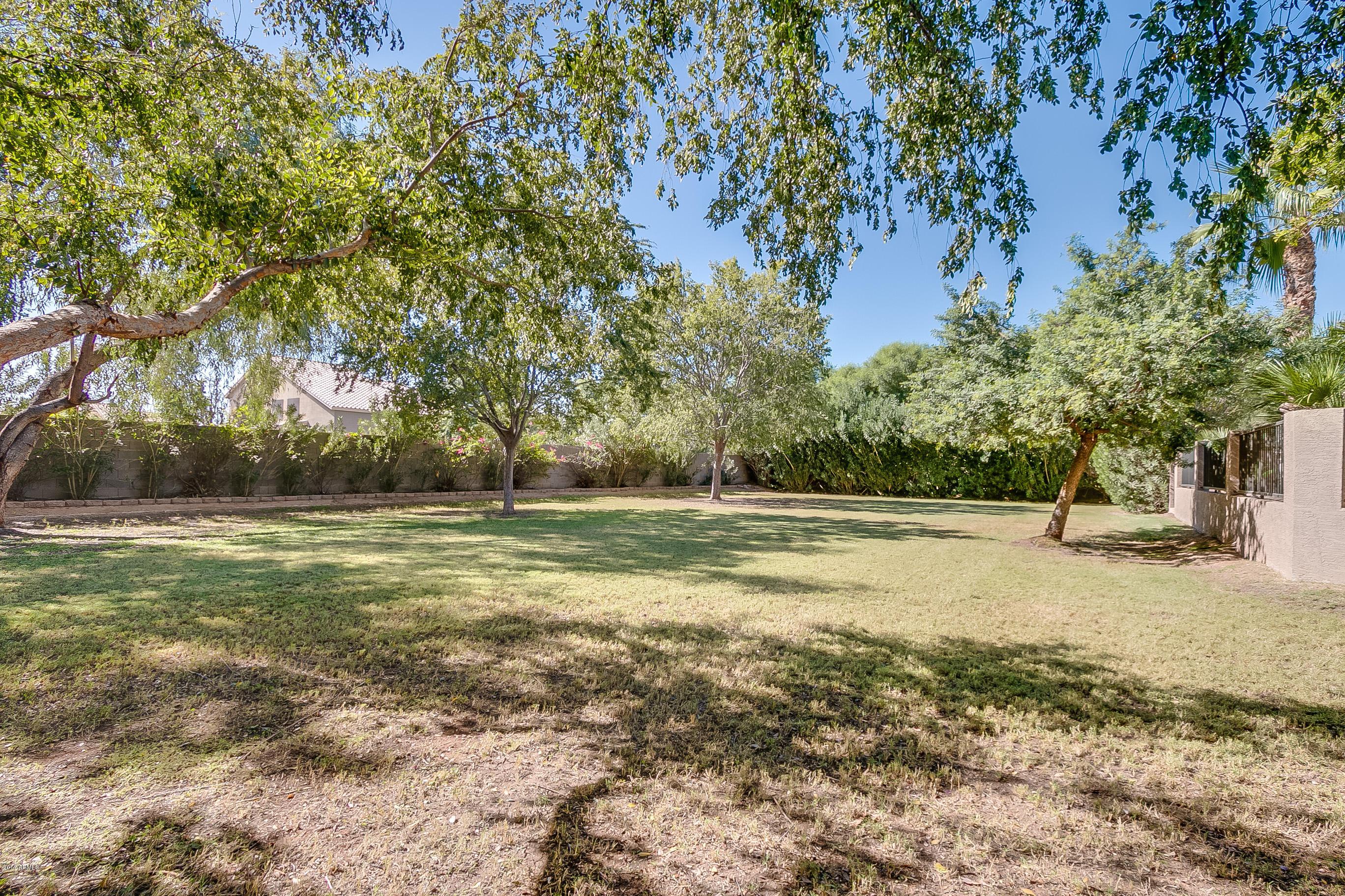 207 S Equestrian  Court Gilbert, AZ 85296 - img8