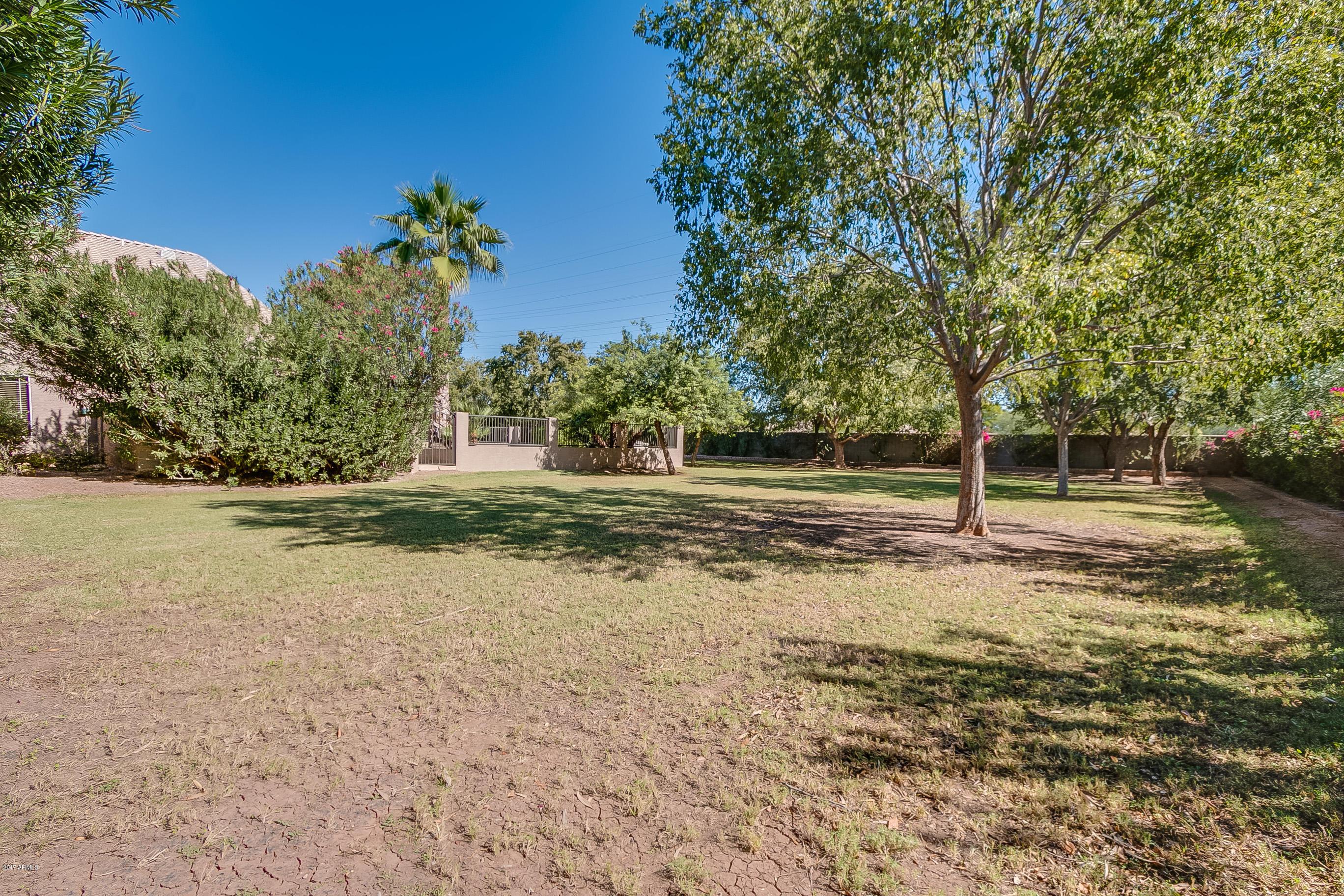 207 S Equestrian  Court Gilbert, AZ 85296 - img11