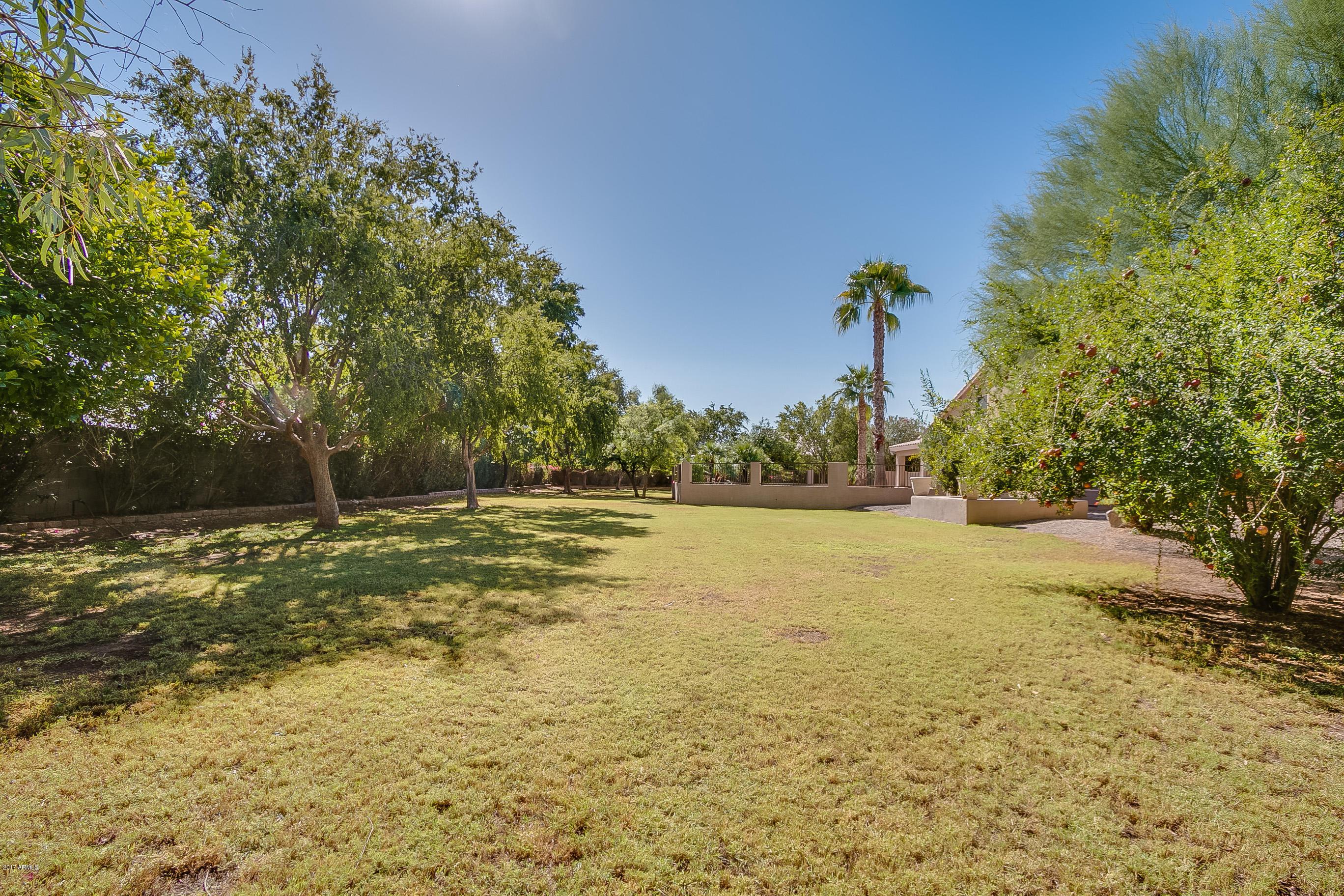 207 S Equestrian  Court Gilbert, AZ 85296 - img13