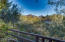 View of McDowell Mountains from back yard
