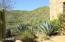42777 N Chiricahua Pass, Scottsdale, AZ 85262