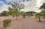 Desert landscaping for privacy