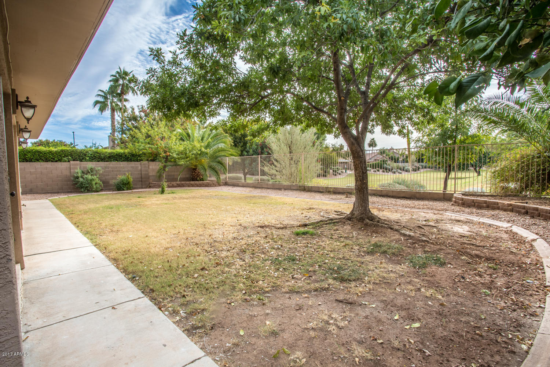 1381 E Windsor  Drive Gilbert, AZ 85296 - img20