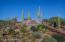41047 N 109TH Place, 3, Scottsdale, AZ 85262