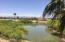 Silverado Golf Course, Lake, walking paths.