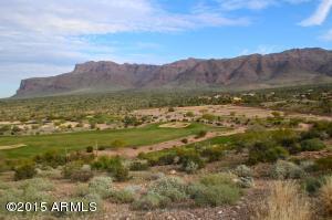 9376 E SKYLINE Trail, 12PET, Gold Canyon, AZ 85118