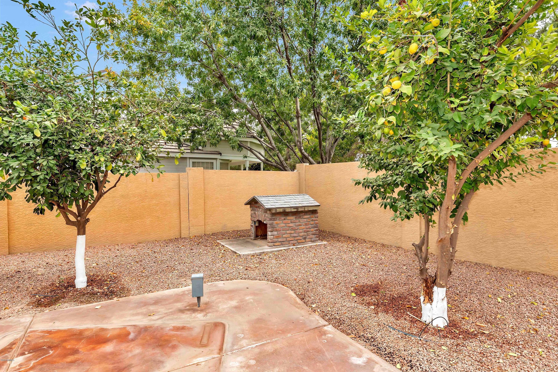 630 E Rawhide  Avenue Gilbert, AZ 85296 - img45
