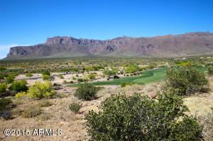 9162 E Skyline Trail, 2PET, Gold Canyon, AZ 85118