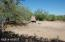 45009 N 6TH Street, New River, AZ 85087