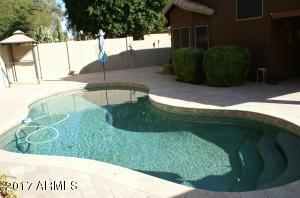 Large Contour Pool