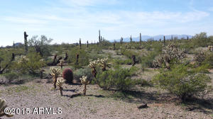Beautiful high desert with lots of Saguaros and Palo Verde.