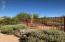 Back yard backs to wash. Check out the saguaro!