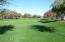 Lush parks