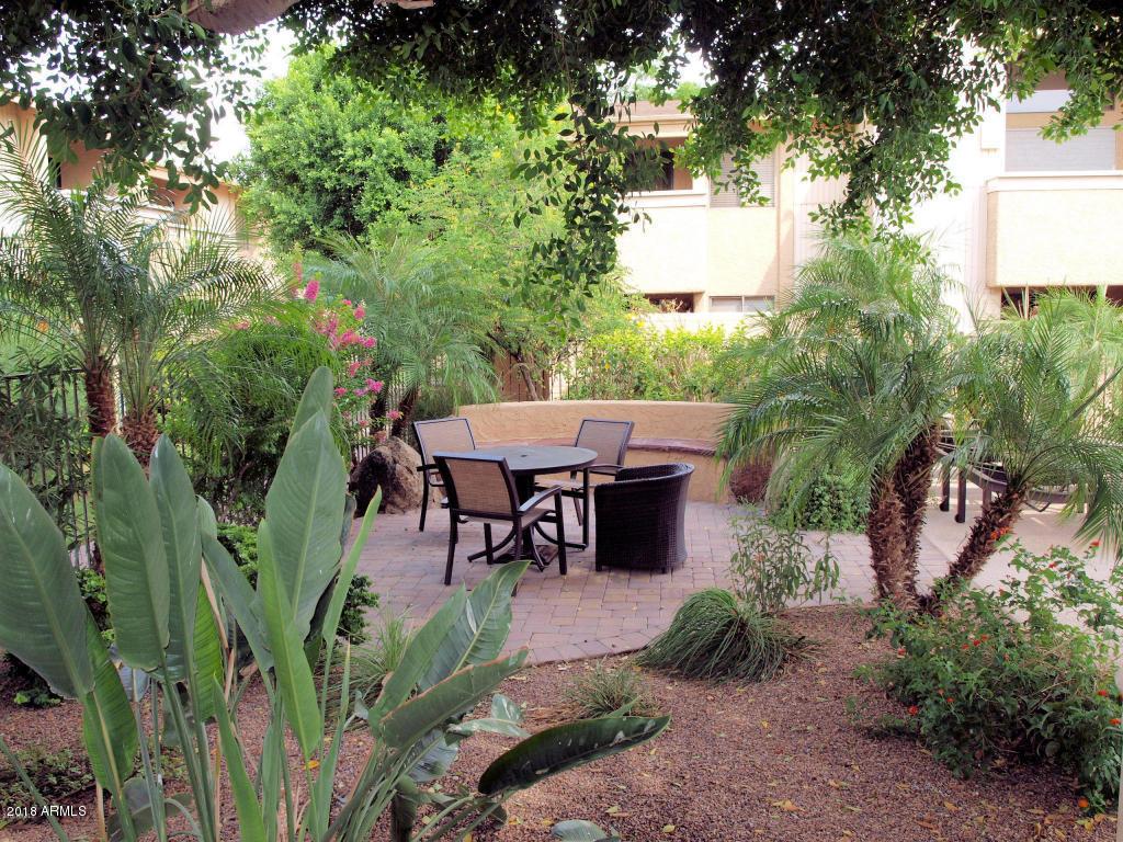 7950 E Starlight  Way Unit 242 Scottsdale, AZ 85250 - img19