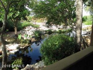 5122 E SHEA Boulevard, 1008, Scottsdale, AZ 85254