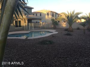 Palm trees make the back yard look tropical