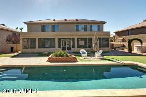 Huge yard with lap pool