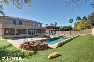 Great pool and easy to maintain artificial grass