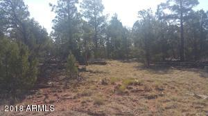 2138 URIAS Road, Clay Springs, AZ 85923