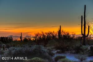 22805 N CHURCH Road, 12, Scottsdale, AZ 85255