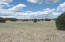 145 W Mail Trail Road, -, Young, AZ 85554