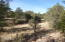 165 W Mail Trail Road, A-1, Young, AZ 85554