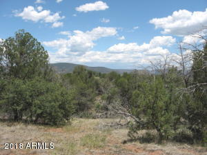 155 W Mail Trail Road, A-2, Young, AZ 85554