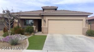 1478 W Popcorn Tree  Avenue San Tan Valley, AZ 85140