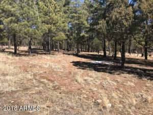 2609 W ARAPAHO Drive Lot 609, Happy Jack, AZ 86024