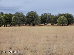 09D N 288 Highway, 31, Young, AZ 85554