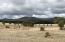 000 N AZ-288 Highway, -, Young, AZ 85554
