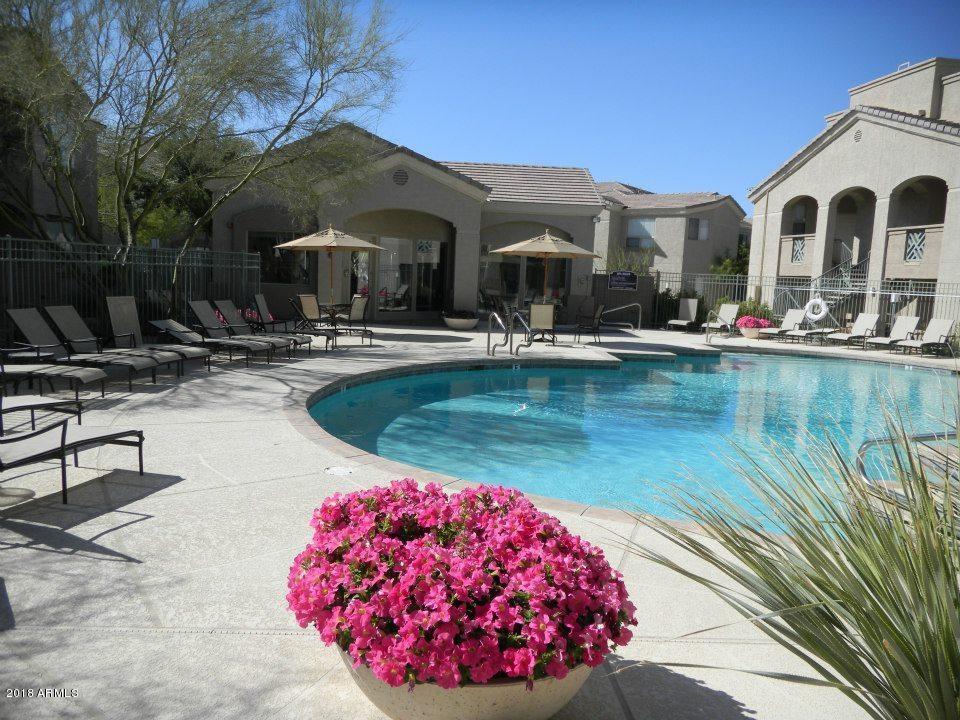 29606 N TATUM Boulevard 105 Cave Creek AZ 85331