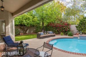 16253 N 50TH Street, Scottsdale, AZ 85254
