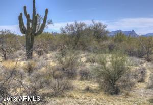 31815 N RANCH Road, 11, Scottsdale, AZ 85266