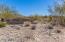 Entrance to Desert Cliffs