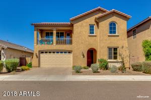 144 E PRESCOTT Drive, Chandler, AZ 85249