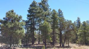 5130 Twin Oaks Loop Lot 22, Happy Jack, AZ 86024