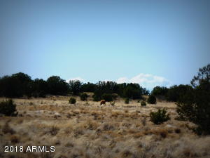 01 Headwater Ranch Lot 11, Chino Valley, AZ 86323
