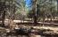 716 W ELLISON CREEK Trail, Payson, AZ 85541