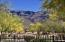 2907 S LOOKOUT Ridge, Gold Canyon, AZ 85118