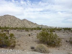 21366 W Sage Hill Road, 519, Buckeye, AZ 85396