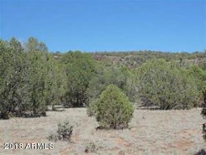9530 Bluebell Lane, White Mountain Lake, AZ 85912
