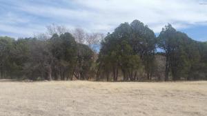 49969-A N AZ HIGHWAY 288 Highway, 0, Young, AZ 85554