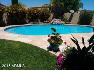23506 N 25TH Street, Phoenix, AZ 85024