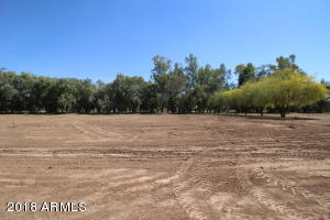 ACTUAL PICTURE OF THE LOT. TREES ARE PART OF THE BACK YARDS